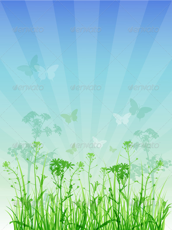 Summer Floral Background - Flowers & Plants Nature
