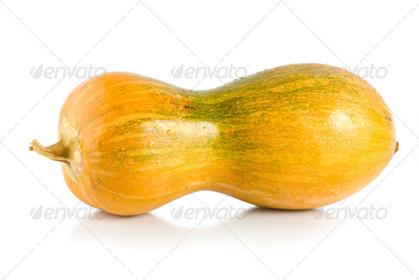 Yellow squash - Stock Photo - Images