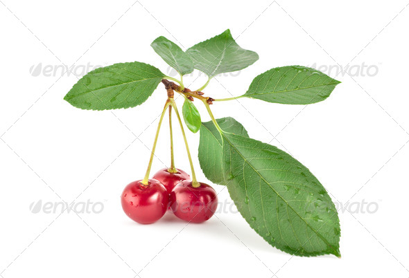 Red cherry - Stock Photo - Images
