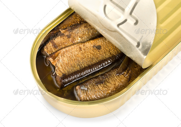 Canned sardines isolated - Stock Photo - Images