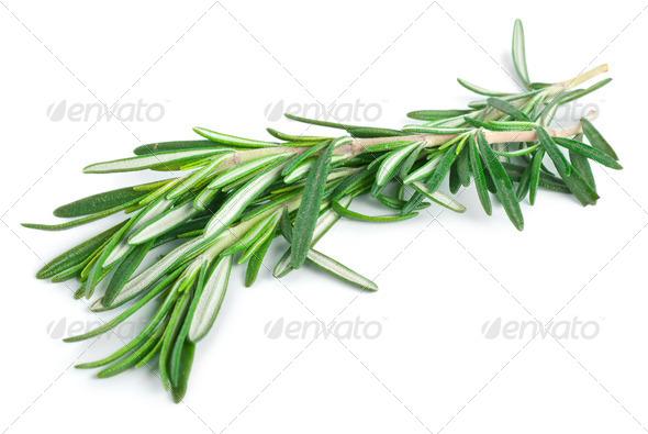 Rosemary - Stock Photo - Images
