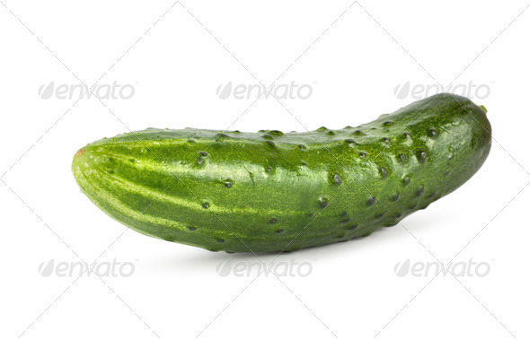 Green cucumber - Stock Photo - Images