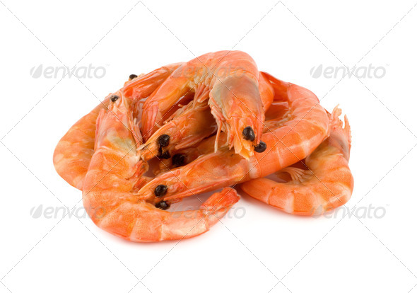 Shrimp isolated - Stock Photo - Images