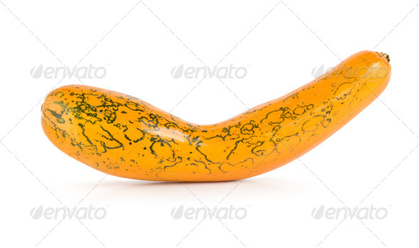 Squash - Stock Photo - Images