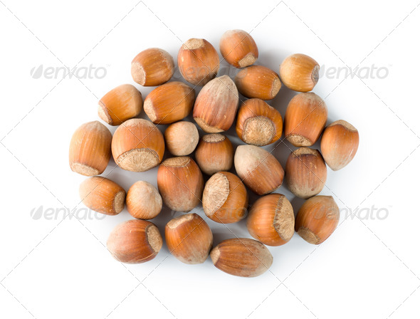 Nuts Isolated - Stock Photo - Images