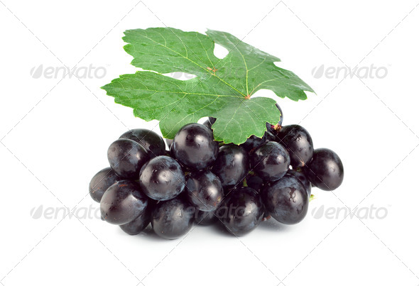 Fresh blue grape - Stock Photo - Images