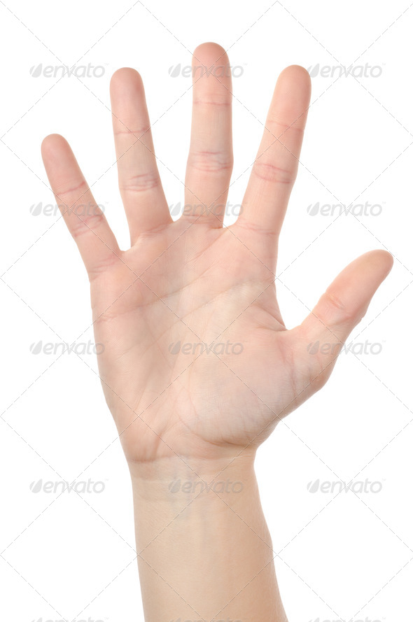 Human hand isolated - Stock Photo - Images