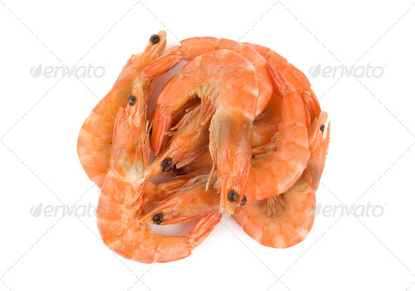 Boiled shrimps - Stock Photo - Images