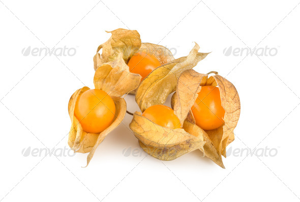 Ripe physalis - Stock Photo - Images