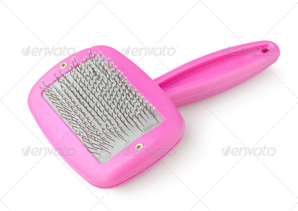 Purple comb - Stock Photo - Images