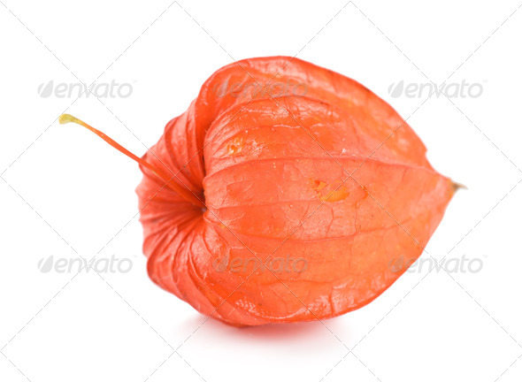 Cape gooseberry - Stock Photo - Images