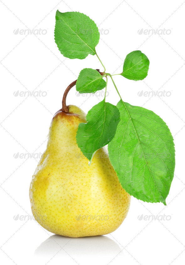 Pear with Leafs - Stock Photo - Images