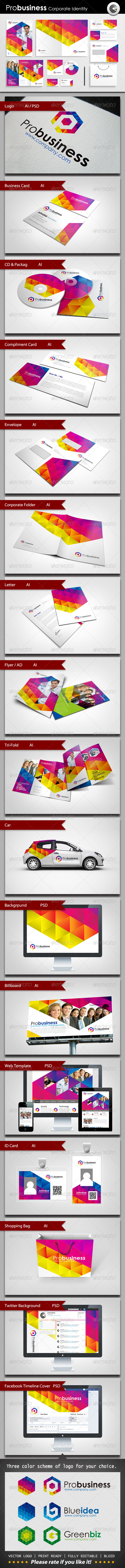 ProBusiness Corporate Identity - Stationery Print Templates