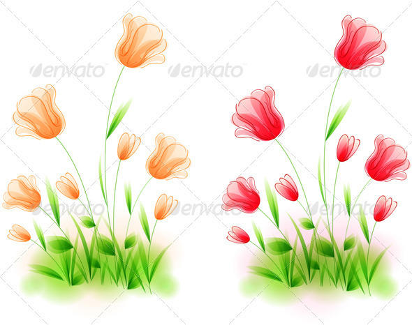 Grass and Tulips - Flowers & Plants Nature