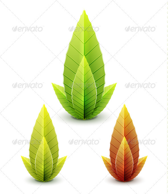 Vector Leaves  - Flowers & Plants Nature