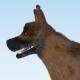 German Shepherd Dog - 3DOcean Item for Sale