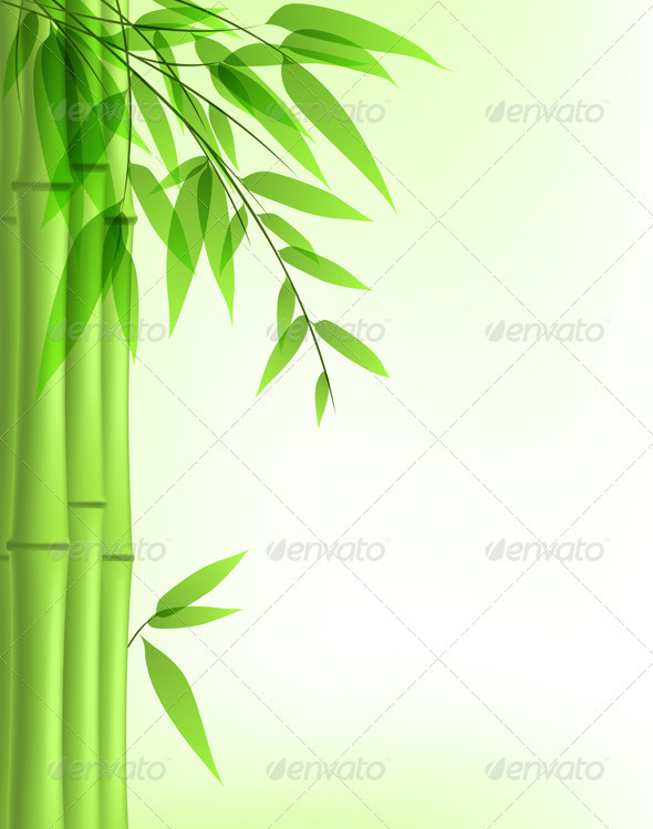 Green Bamboo - Flowers & Plants Nature