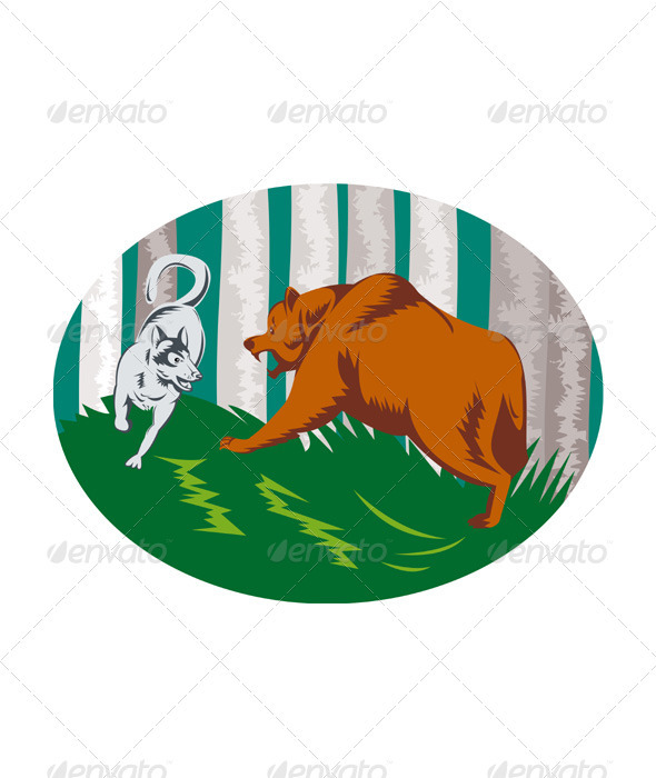 Wild Dog Wolf Fighting Grizzly Bear - Animals Characters