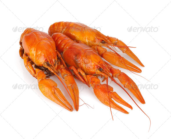 Three boiled crayfishes - Stock Photo - Images