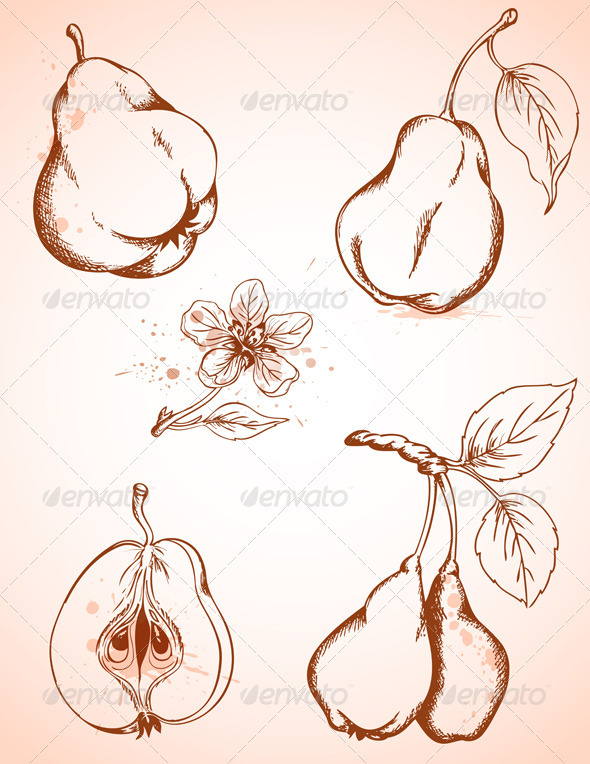 Vintage Pears - Food Objects