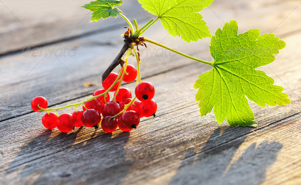 Redcurrant on wooden table - Stock Photo - Images