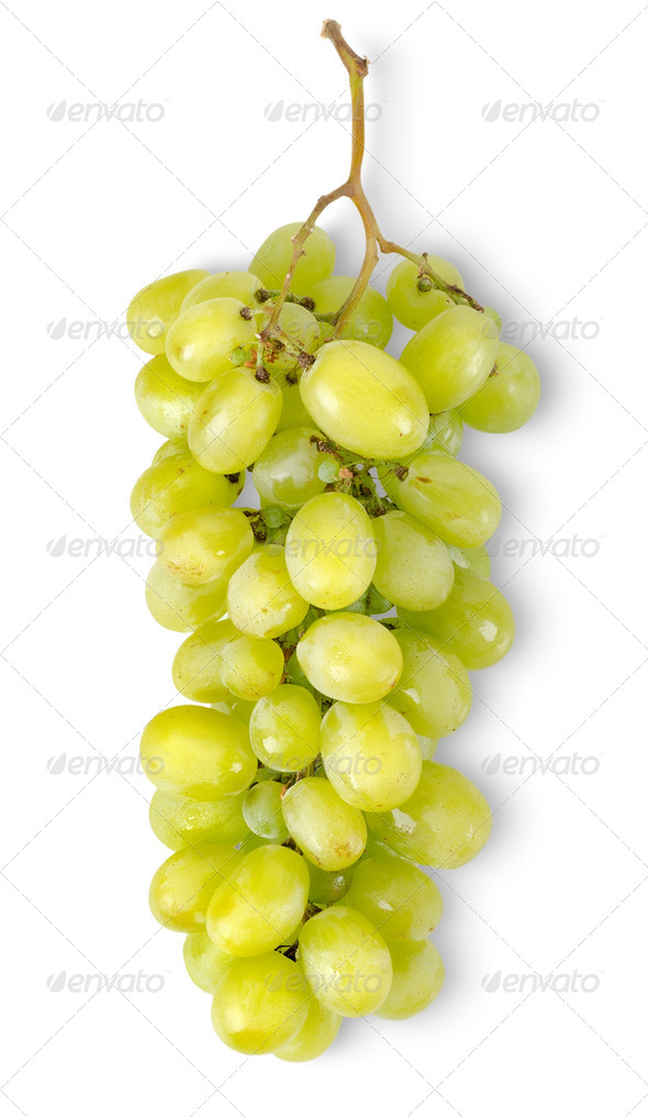 Bunch of green grapes isolated - Stock Photo - Images