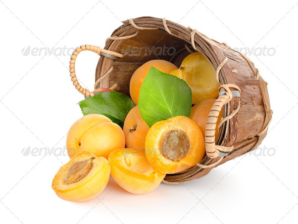 Apricots in a basket - Stock Photo - Images