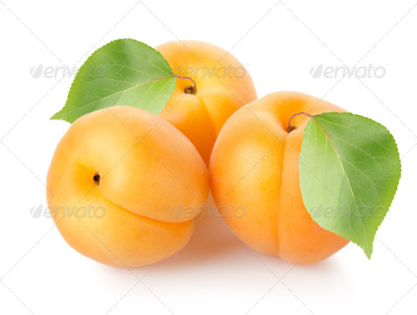 Apricots with leaves - Stock Photo - Images
