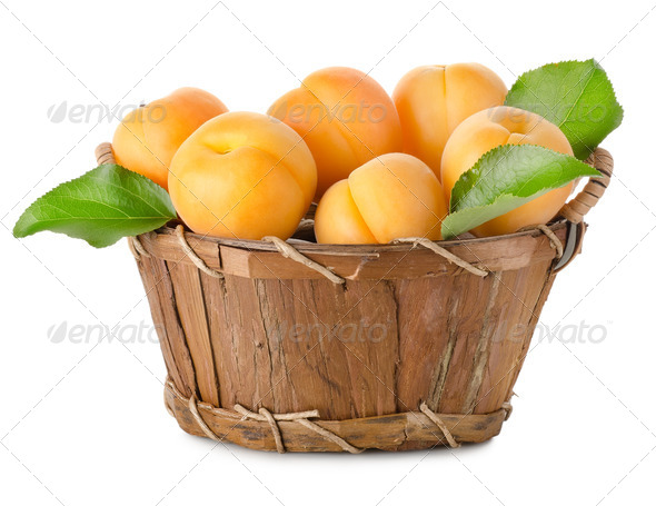 Apricots in a basket isolated - Stock Photo - Images