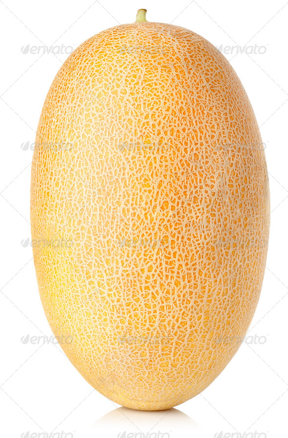 Cantaloupe - Stock Photo - Images