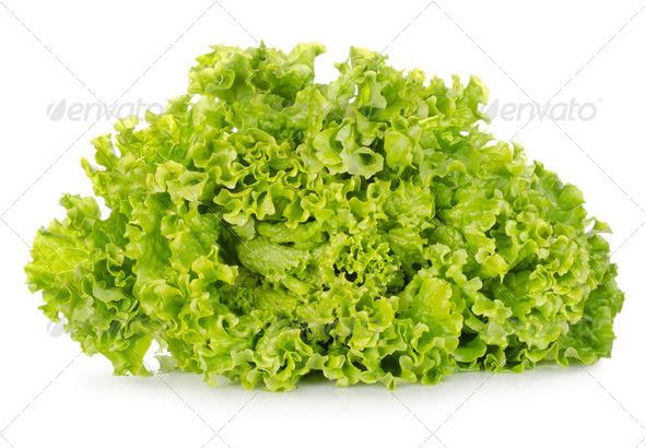 Fresh green lettuce - Stock Photo - Images