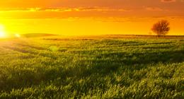 Landscape Sunsets