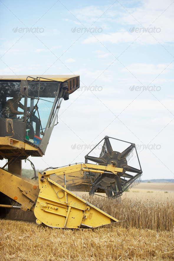 Combine Harvester Working In Field - Stock Photo - Images