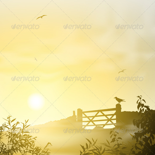 Misty Morning Landscape - Landscapes Nature