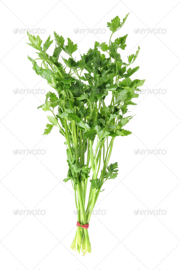 Parsley on White Background - Stock Photo - Images