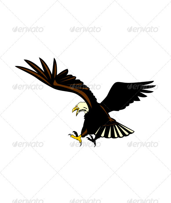Bald Eagle Flying - Animals Characters