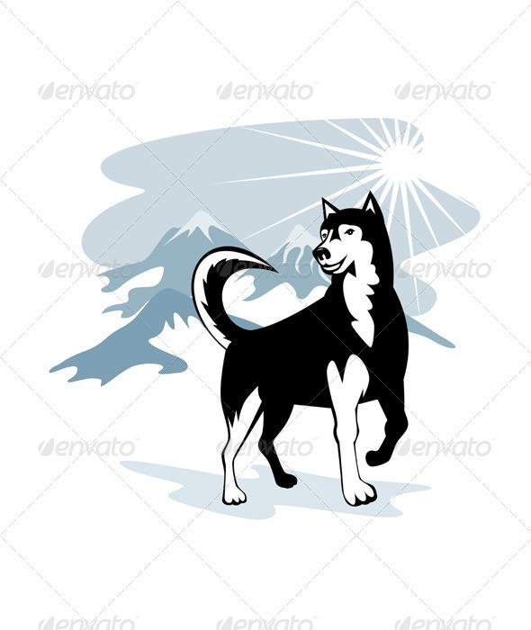Husky Wild Dog Wolf Retro - Animals Characters