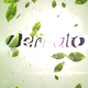 Green Project - VideoHive Item for Sale