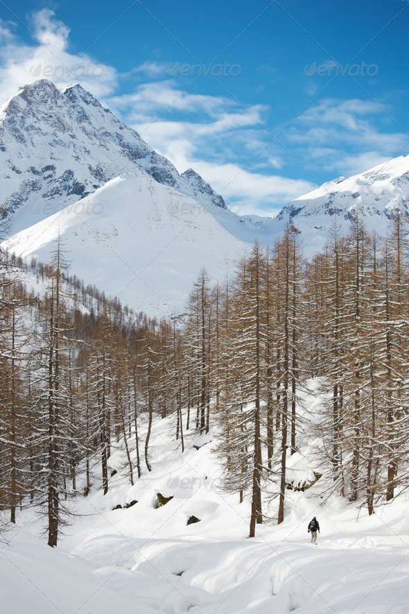 Mountain winter landscape - Stock Photo - Images