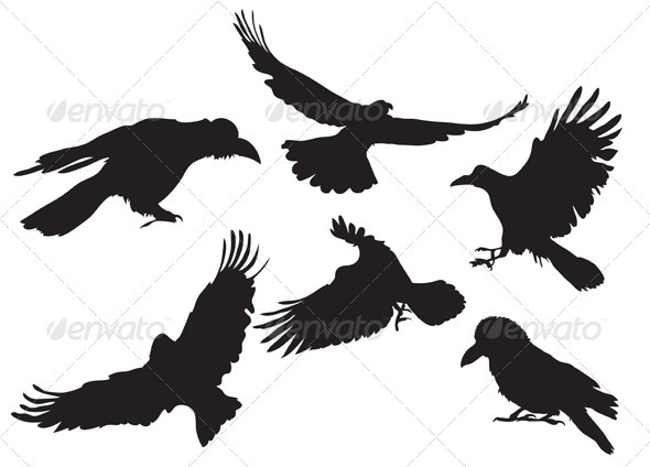 Crow silhouette  - Animals Characters