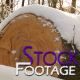 """""""Winter Log"""" FullHD Stock Footage H.264 - VideoHive Item for Sale"""