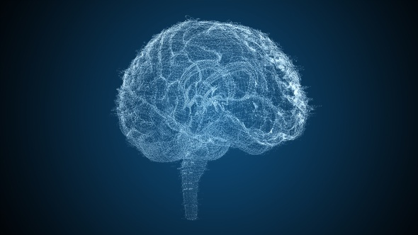 Blue Brains 2 - 5