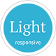 Light - Responsive Mobile Retina Ready Template Nulled
