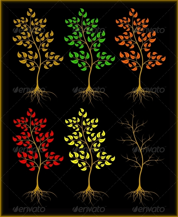 Trees on a black background - Flowers & Plants Nature