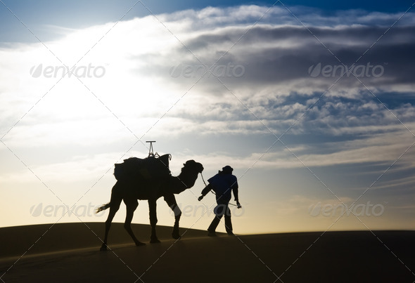 Man walking in the desert - Stock Photo - Images