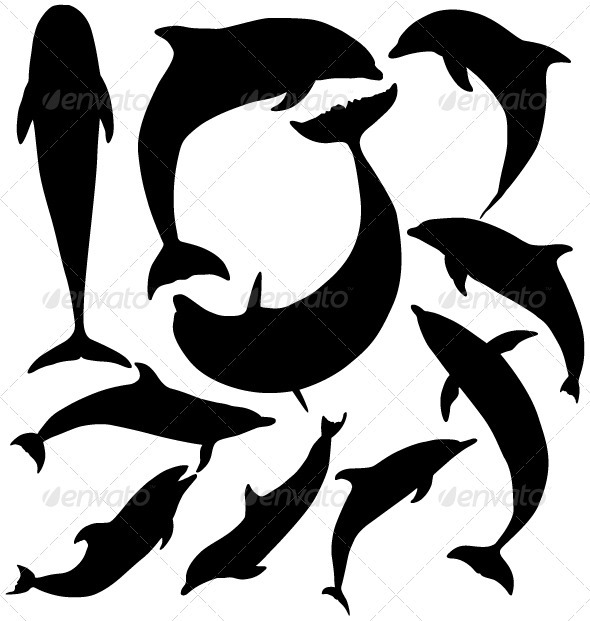 Dolphin silhouette on white background - Animals Characters