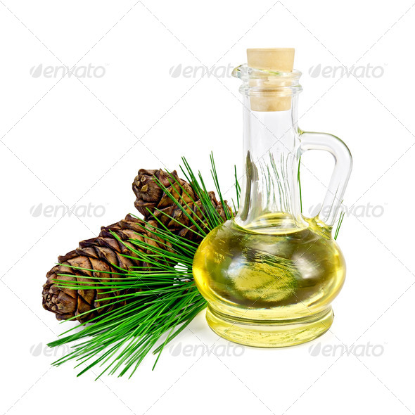 Oil cedar with cones - Stock Photo - Images