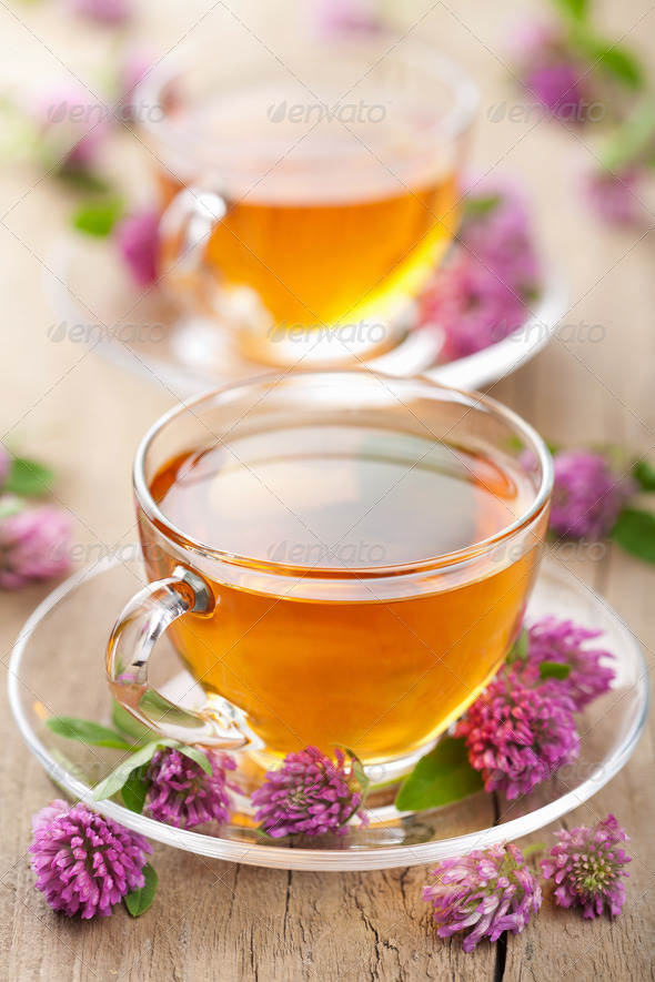 herbal tea and clover flowers - Stock Photo - Images