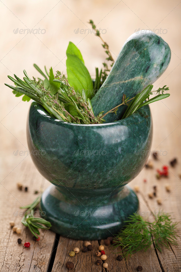 mortar with fresh herbs - Stock Photo - Images