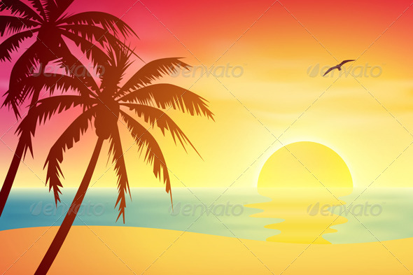 Tropical Sunset - Landscapes Nature